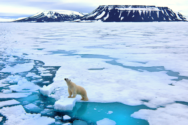 The Climate Change Paradox in Arbitration