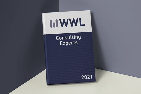 Consulting Experts
