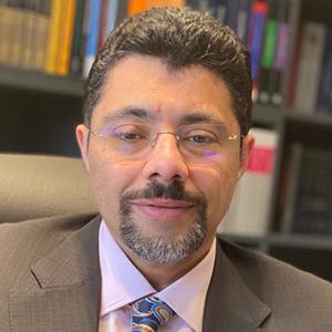 Mohamed S Abdel Wahab