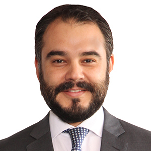 Luis Pedro del Valle