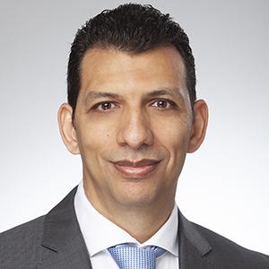 Walied Abdeldayem